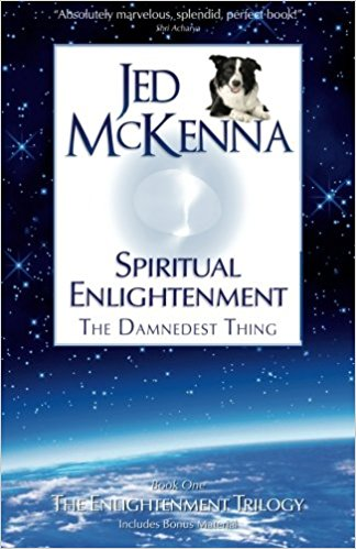 Jed McKenna, Spiritual Enlightenment: The Damnedest Thing